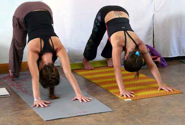 What Yoga Class is Best for Me showing students in downward dog