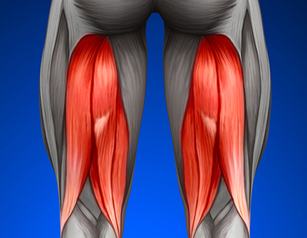Active muscle stretching - hamstring muscles
