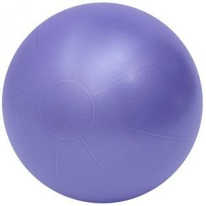 Theragear swiss pro ball purple