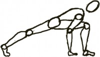 illustrated lunge pose