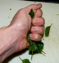 crushing the mint leaves