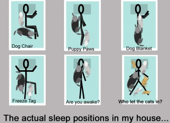 actual sleep positons jbyrdyoga