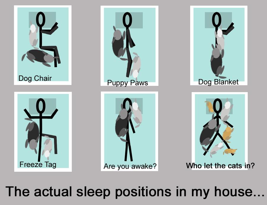 actual sleep positons jbyrdyoga