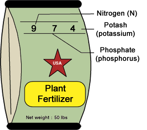 plant fertilizer